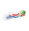 Aquafresh Herbal Tooth Paste 100mls
